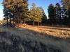 7000 N. Hwy 89, Flagstaff, AZ, 86004