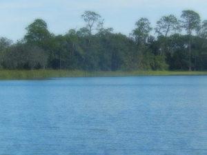 Medium_lake_view_opp_shore