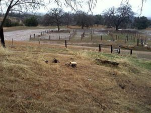 Madera Foothill Property For Sale